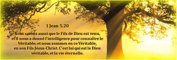 5d2ed2c49e0d5 Traduit par PLEINSFEUX.